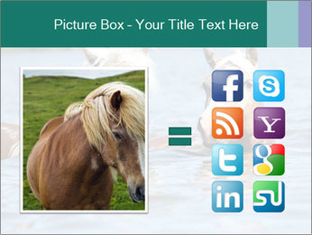 Two Horses In water PowerPoint Template - Slide 21