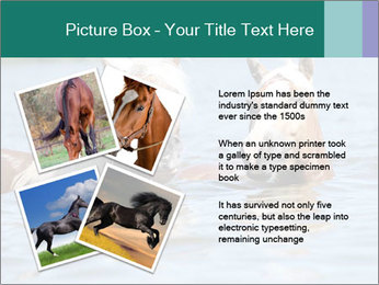 Two Horses In water PowerPoint Template - Slide 23