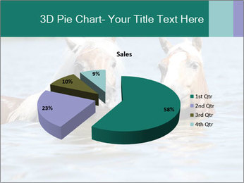 Two Horses In water PowerPoint Template - Slide 35