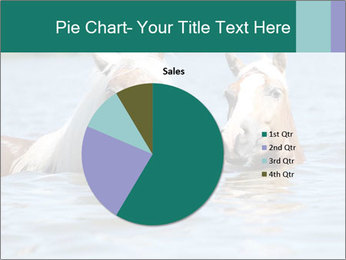 Two Horses In water PowerPoint Template - Slide 36