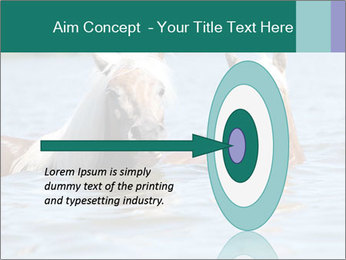 Two Horses In water PowerPoint Template - Slide 83