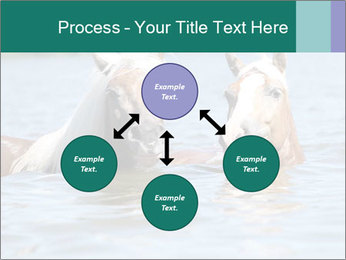 Two Horses In water PowerPoint Template - Slide 91