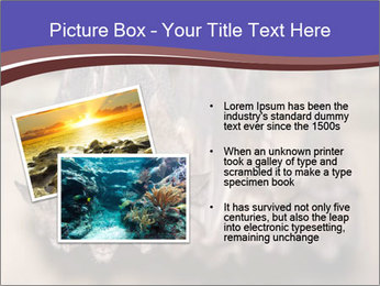 Wild Bats PowerPoint Template - Slide 20
