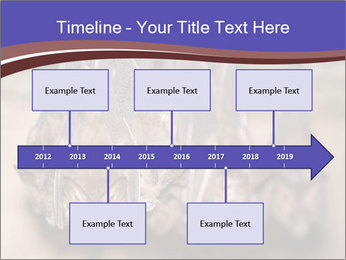 Wild Bats PowerPoint Template - Slide 28