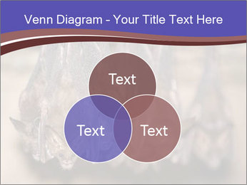 Wild Bats PowerPoint Template - Slide 33