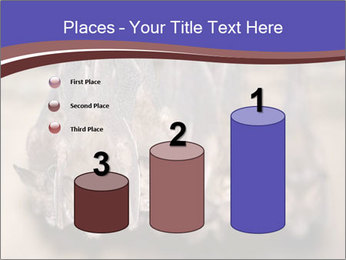 Wild Bats PowerPoint Template - Slide 65