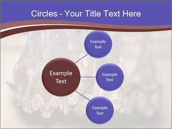 Wild Bats PowerPoint Template - Slide 79