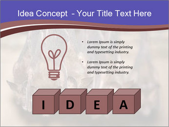 Wild Bats PowerPoint Template - Slide 80