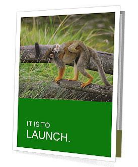 0000090314 Presentation Folder