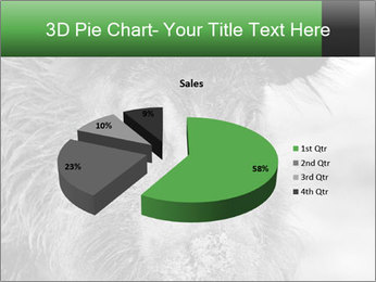 Wild Pig PowerPoint Templates - Slide 35