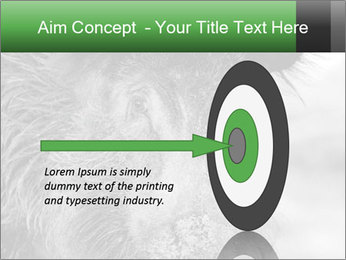 Wild Pig PowerPoint Templates - Slide 83