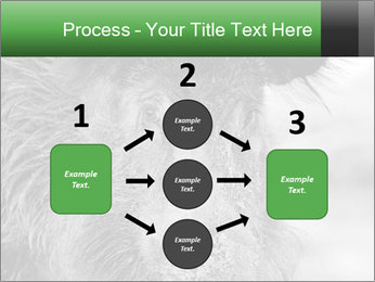 Wild Pig PowerPoint Templates - Slide 92