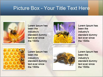 Macro Bee PowerPoint Template - Slide 14
