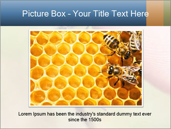 Macro Bee PowerPoint Template - Slide 15