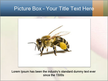 Macro Bee PowerPoint Templates - Slide 16