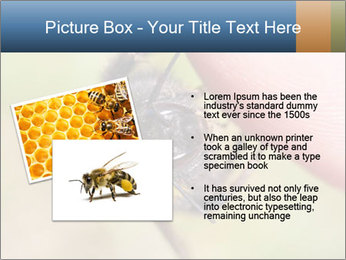 Macro Bee PowerPoint Template - Slide 20