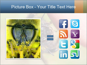 Macro Bee PowerPoint Template - Slide 21