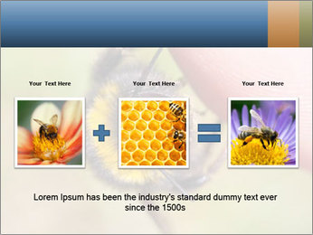 Macro Bee PowerPoint Template - Slide 22