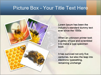 Macro Bee PowerPoint Template - Slide 23