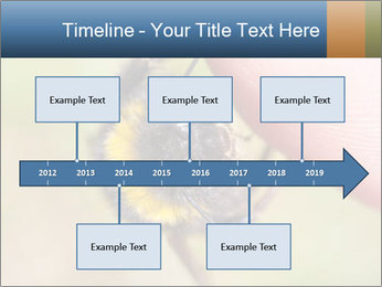 Macro Bee PowerPoint Template - Slide 28