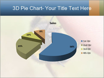 Macro Bee PowerPoint Template - Slide 35
