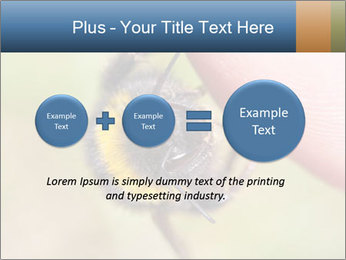 Macro Bee PowerPoint Template - Slide 75
