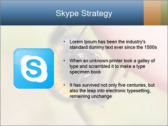 Macro Bee PowerPoint Template - Slide 8