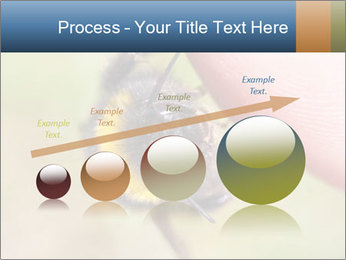 Macro Bee PowerPoint Template - Slide 87