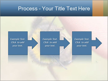 Macro Bee PowerPoint Templates - Slide 88