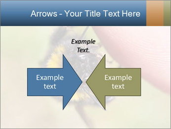 Macro Bee PowerPoint Template - Slide 90