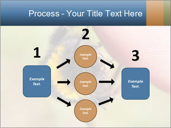 Macro Bee PowerPoint Template - Slide 92