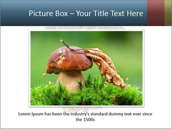 Healthy Grains PowerPoint Template - Slide 15