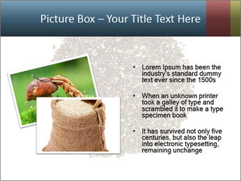 Healthy Grains PowerPoint Template - Slide 20
