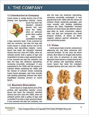 0000090324 Word Template - Page 3
