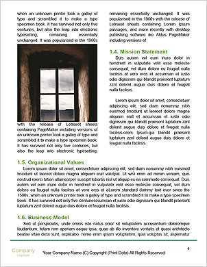 0000090326 Word Template - Page 4