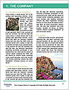 0000090327 Word Template - Page 3