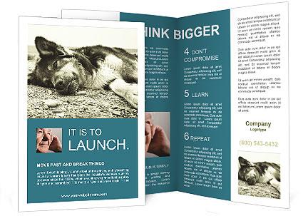 0000090331 Brochure Template