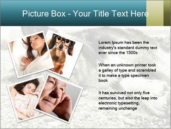 Sad Dog PowerPoint Template - Slide 23