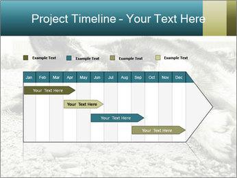 Sad Dog PowerPoint Template - Slide 25