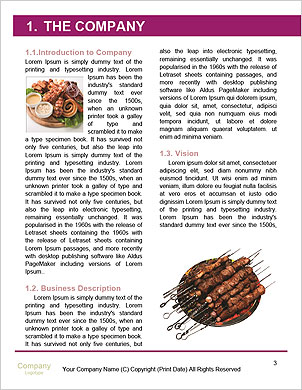 0000090334 Word Template - Page 3