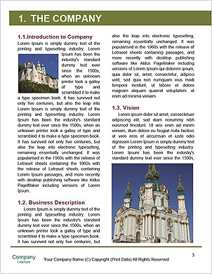 0000090336 Word Template - Page 3