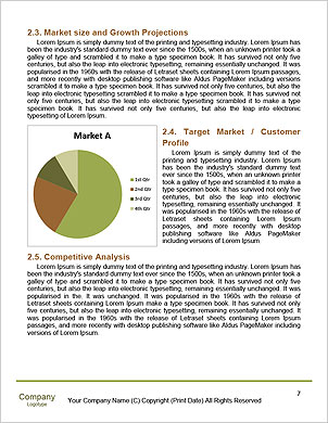 0000090338 Word Template - Page 7
