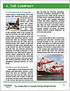 0000090341 Word Template - Page 3