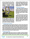0000090342 Word Template - Page 4