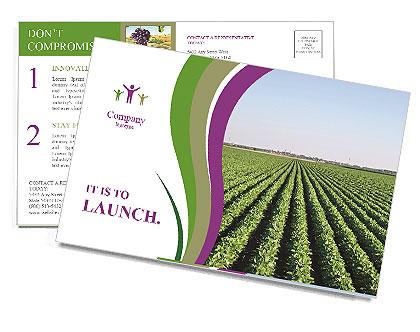 0000090349 Postcard Templates