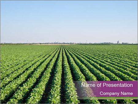 Green Field Till Horizon PowerPoint Templates