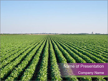 Green Field Till Horizon PowerPoint Template
