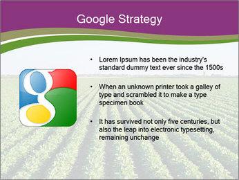 Green Field Till Horizon PowerPoint Template - Slide 10