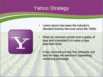 Green Field Till Horizon PowerPoint Template - Slide 11