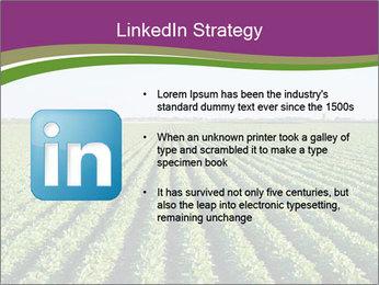 Green Field Till Horizon PowerPoint Template - Slide 12